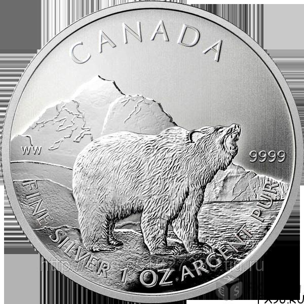 монета канадского доллара